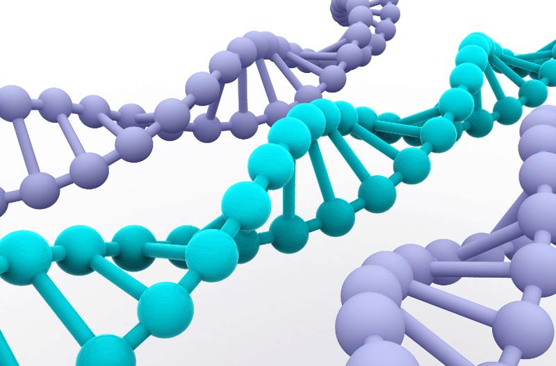 По пътя на ДНК