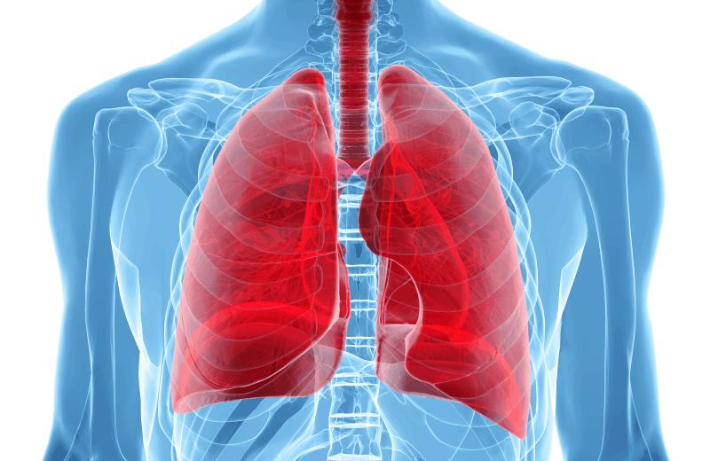 Поведение при инфекции на долните дихателни пътища в амбулаторни условия