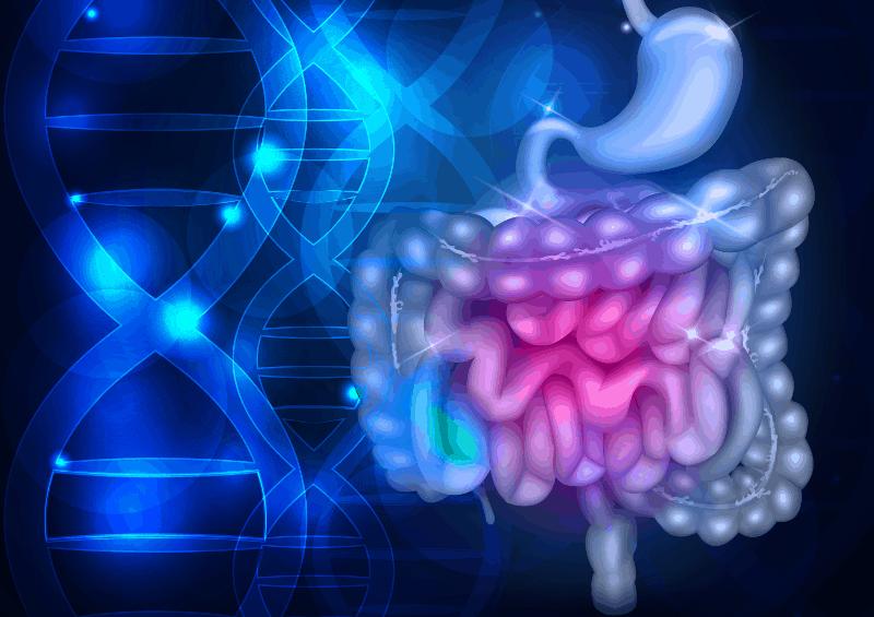 Хроничните възпалителни заболявания на червата - диагностични методи