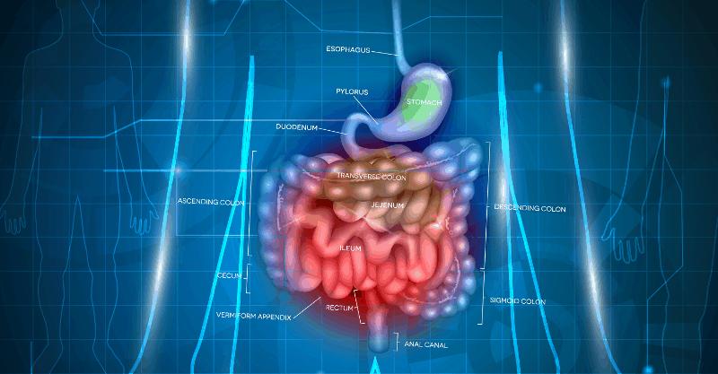 Подценяваме ли инфекцията с Clostridium difficile?
