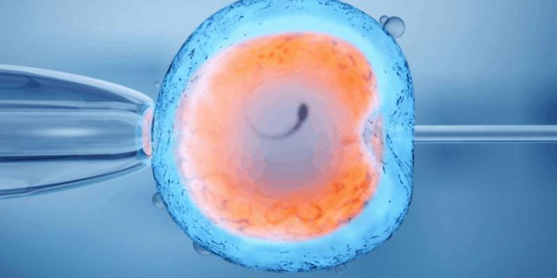 Риск от поява на вродени малформации при деца, родени след асистирана репродуктивна технология (ART)