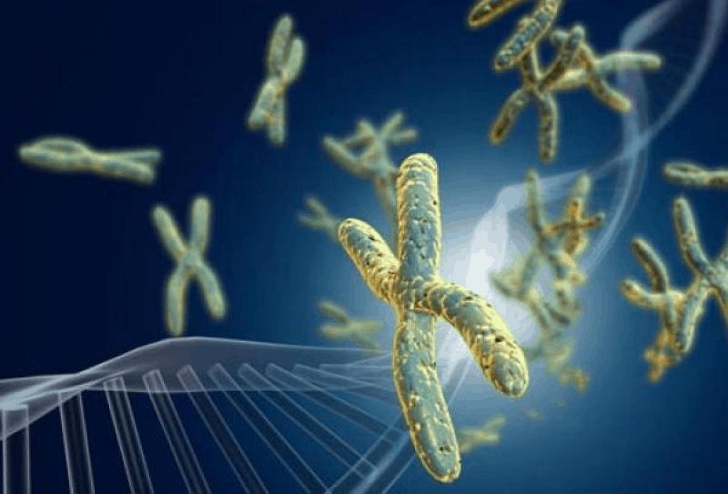 Приложение на методите на конвенционалната и молекулярна цитогенетика в педиатричната практика