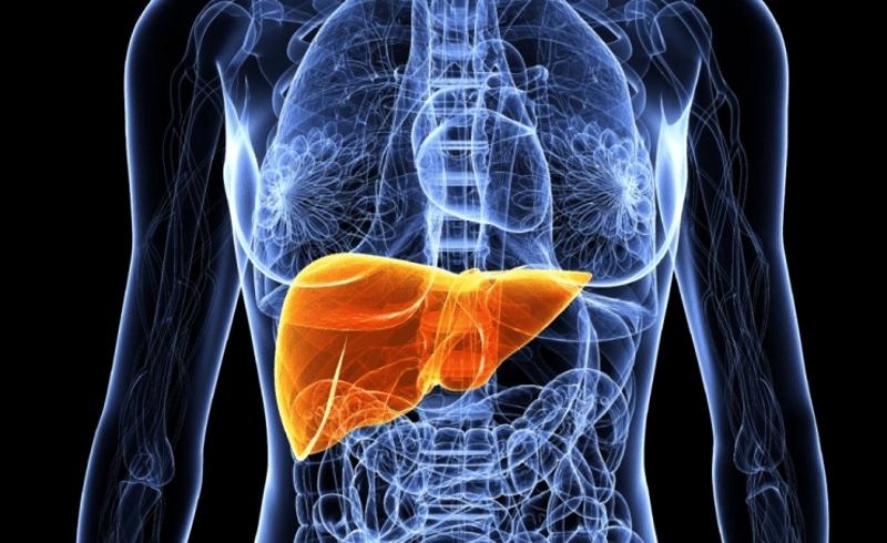 Остра чернодробна недостатъчност. Изкуствен черен дроб