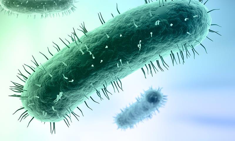 Инфекции на пикочните пътища: микоплазми и уреаплазми
