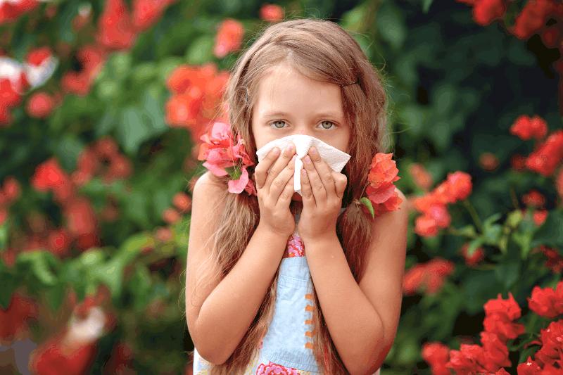 Алергичен риносинуит – диагностичен и терапевтичен алгоритъм в детска възраст