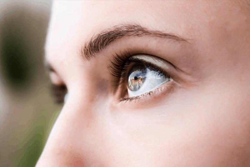 Мейбомиеви жлези – строеж, функция, физиология и инервация