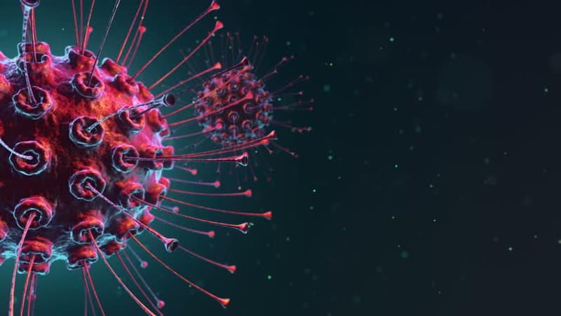 Значение на свободните радикали в патогенезата на заболявания и интоксикации