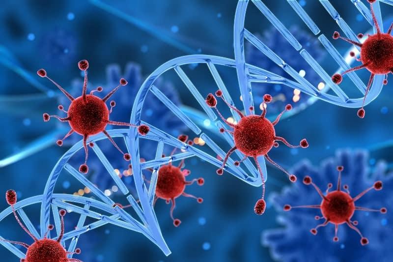 Лечение на генетичните болести с вируси