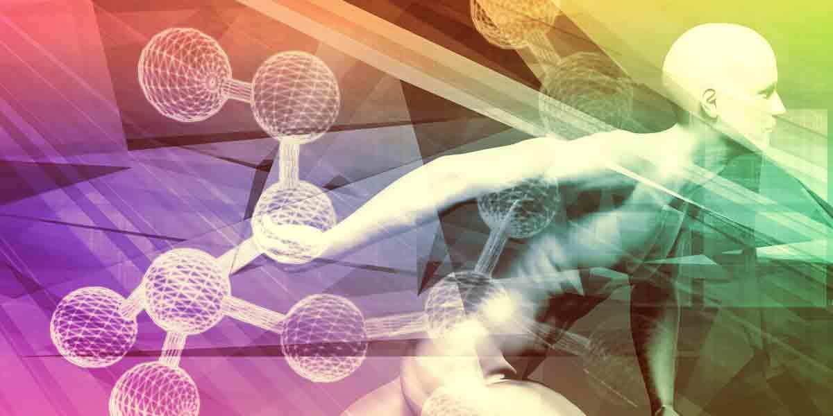 Биологичният часовник на човешката ендокринна система