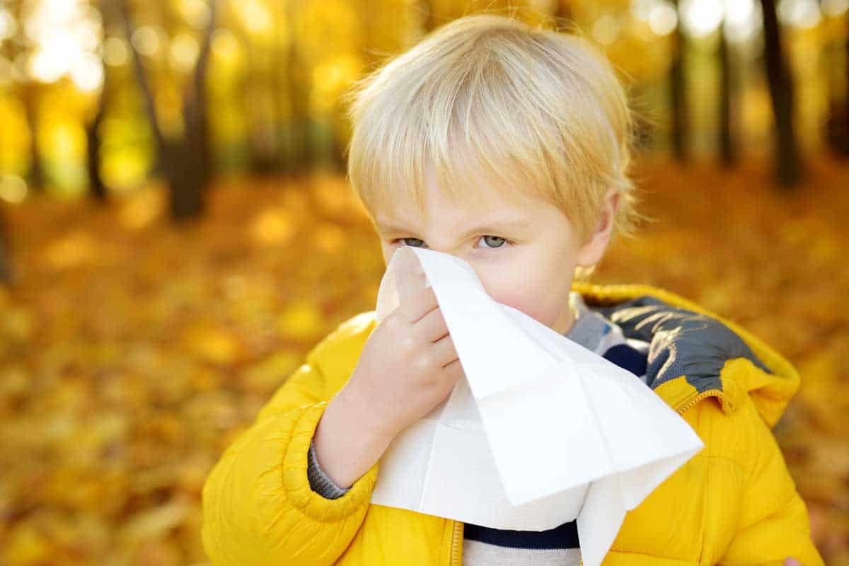 Алергичен ринит – фактори, определящи появата му
