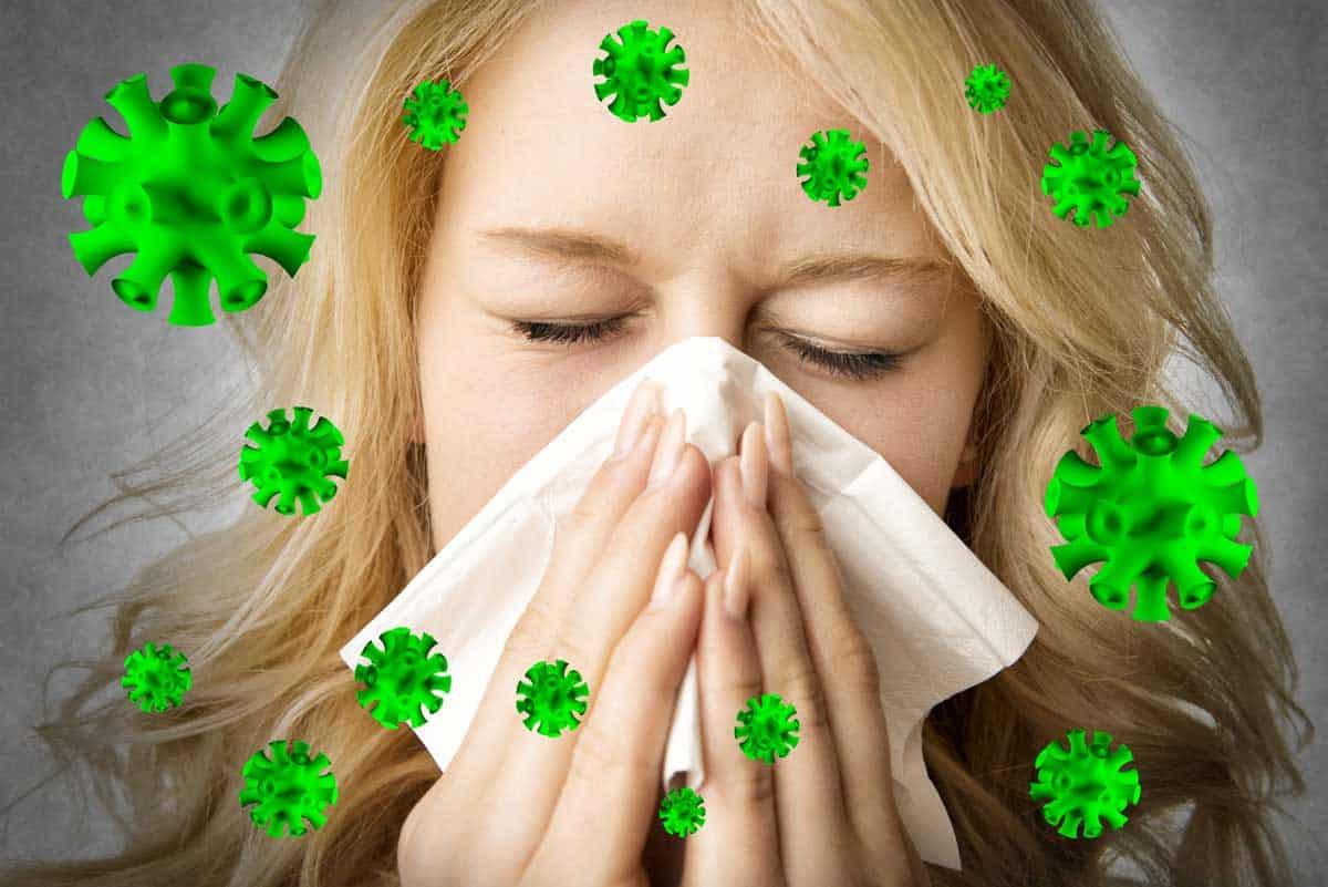 В очакване на грипна вълна