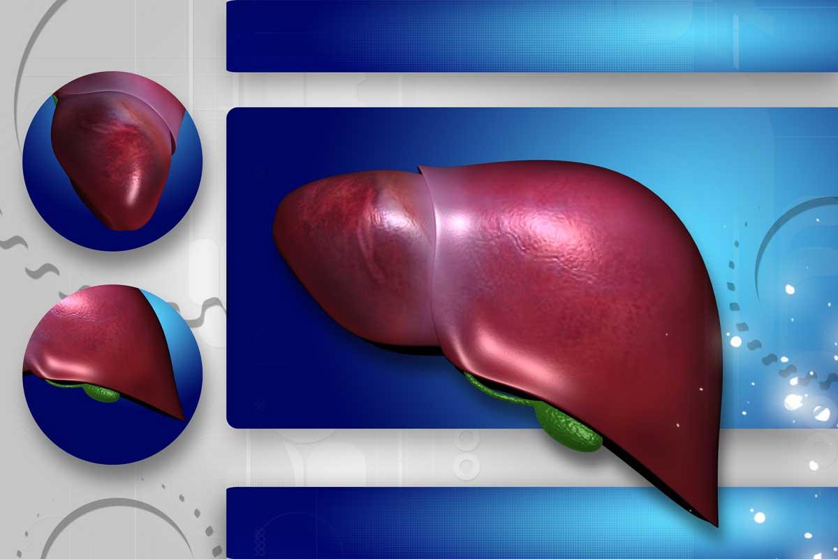 Неалкохолната мастна чернодробна болест (НАМЧБ) – нарастващ здравен проблем в България