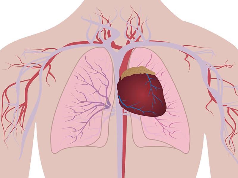 Минимално инвазивна и иновативна хирургия на аортна клапа